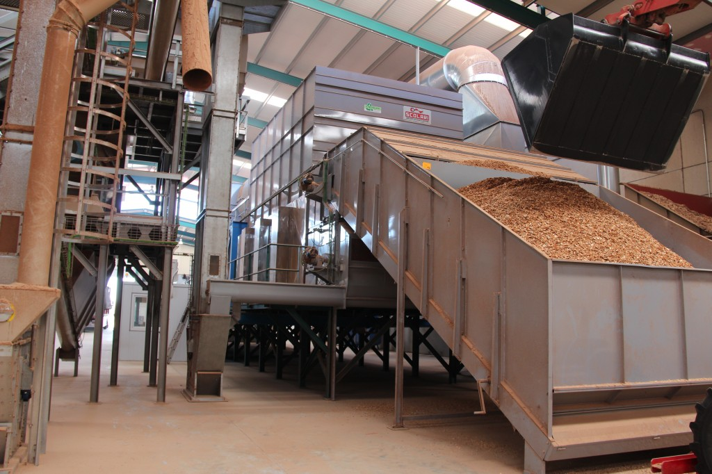 Fábrica de pellets en Leon| Coterram Generación